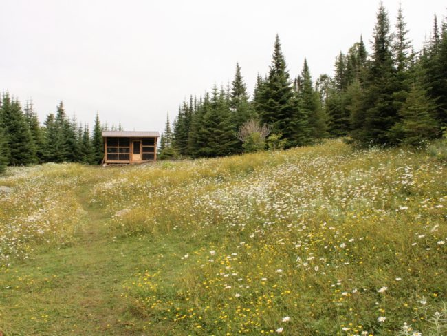 Meadow and cabin on Lake Superior. This is on the Slate Islands.
